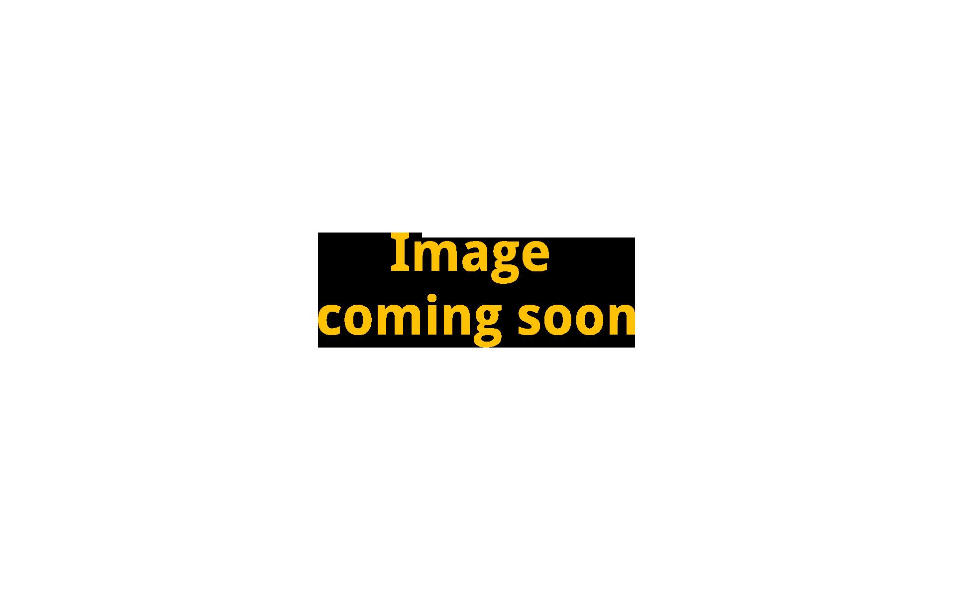 Sleeve #11 PAL Metallic 230mm x 6mm